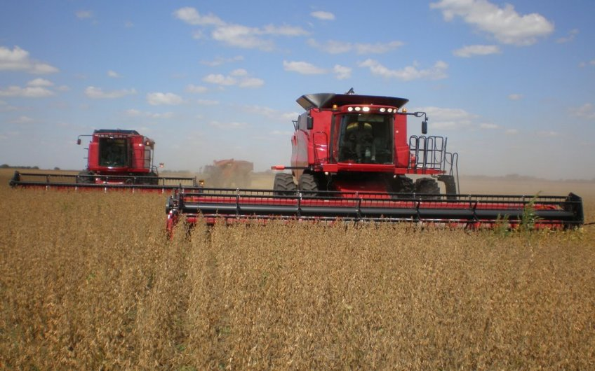 116 ha agrícolas a 30 km de Córdoba capital